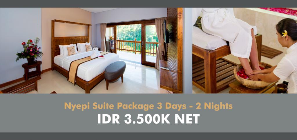 Web Banner Nyepi - suite
