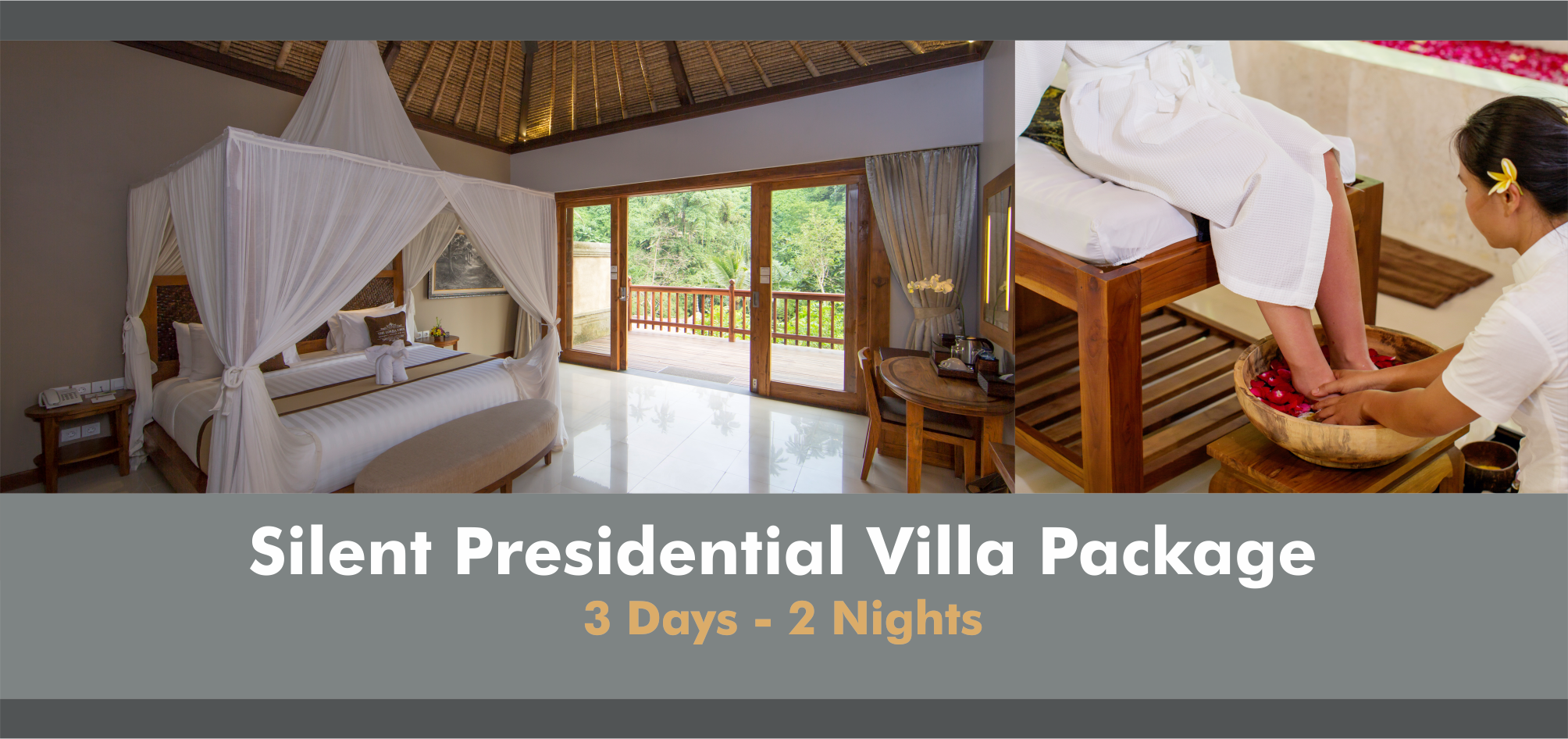 Silent Packages - Presidential Villa